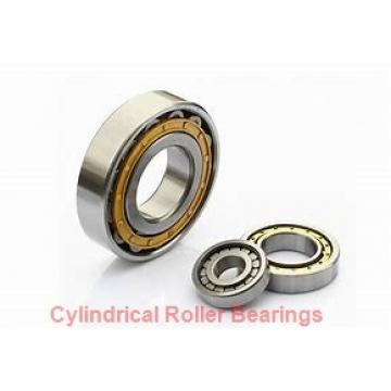NTN  SL01-4960 SL Type Cylindrical Roller Bearings