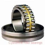 NTN  SL04-5040NR SL Type Cylindrical Roller Bearings for Sheaves